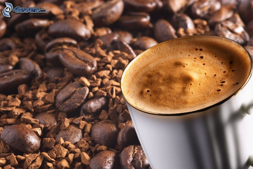 café, café en grains