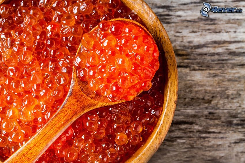 caviar, cuillère, bol