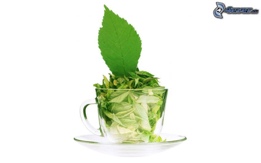 feuilles de menthe, tasse