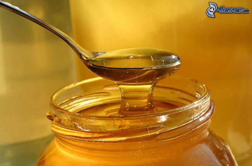 miel, cuillère