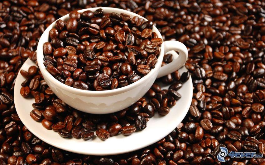 tasse, café en grains