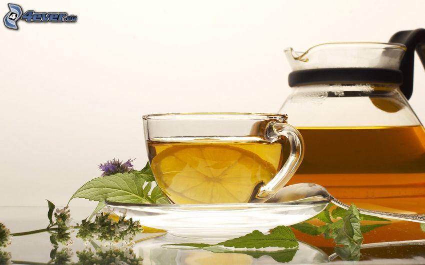 tasse du thé, théière, herbes