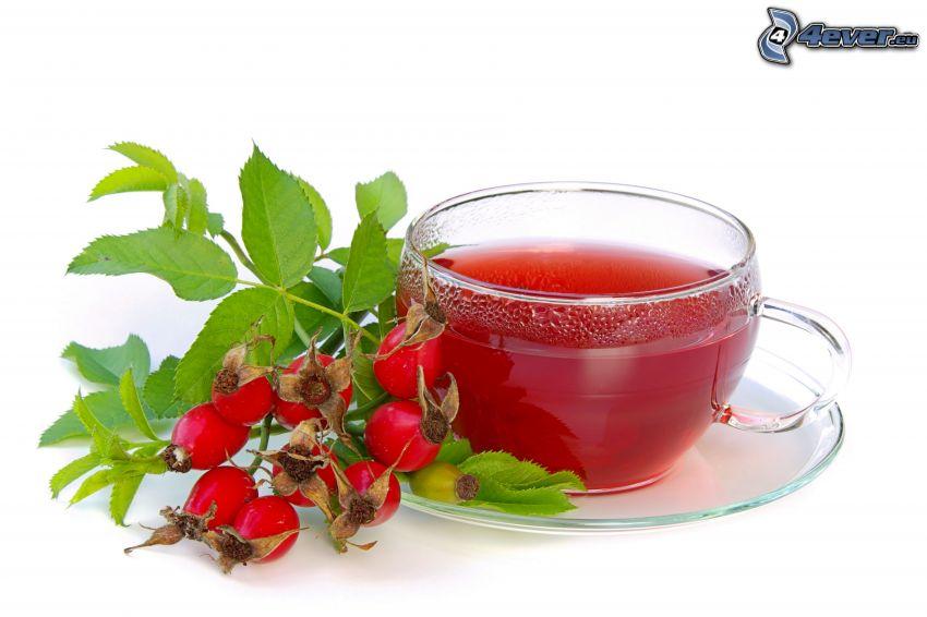thé d'herbes, Rosier des Chiens