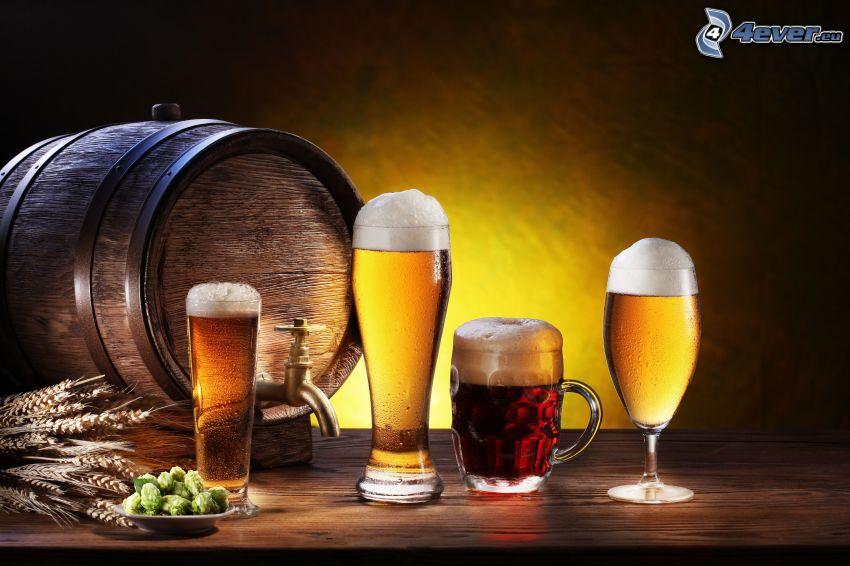 verres de bière, tonneau