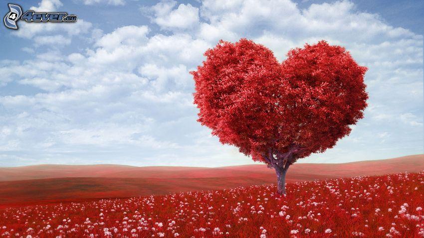 cœur, arbre, nuages, prairie