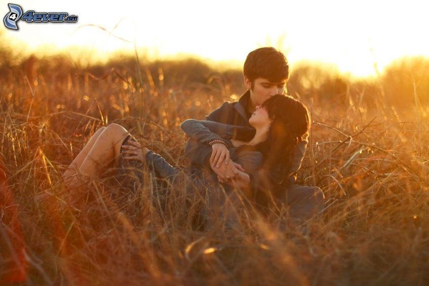 couple, champ, coucher du soleil, baiser