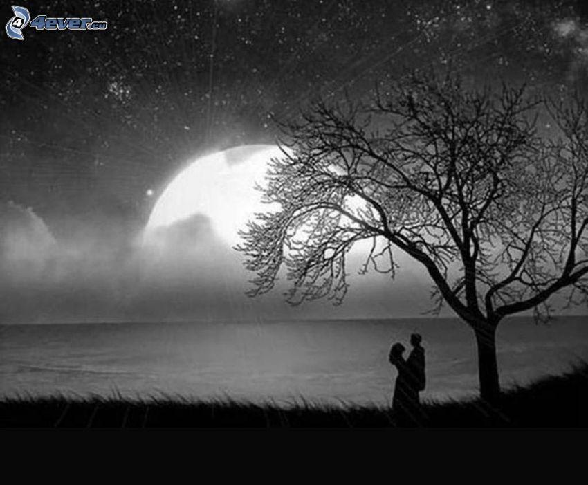couple sous l'arbre