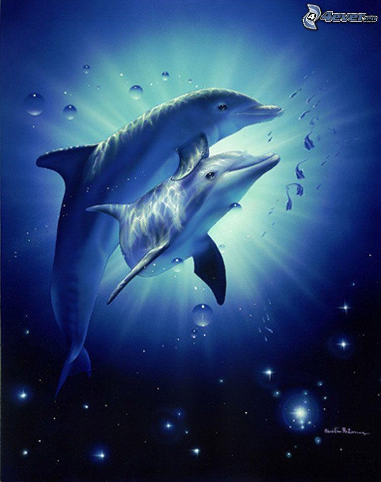 dauphins, amour, eau