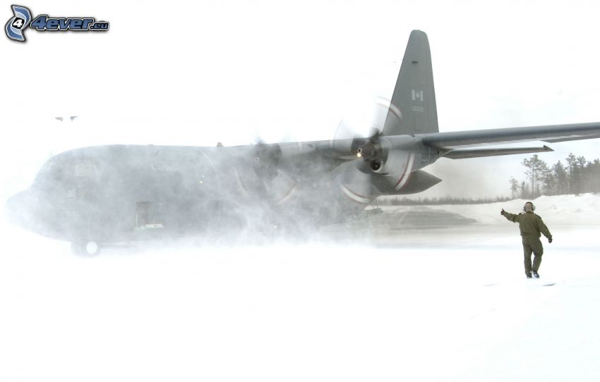 avion, homme, neige
