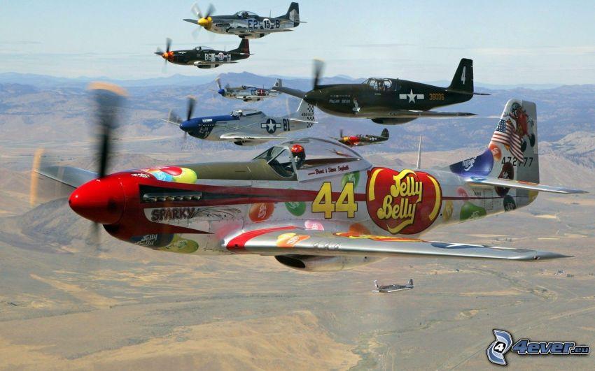 P-51 Mustang, vue sur le paysage
