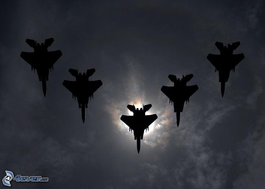 Flotte de F-15 Eagle, silhouettes de combattants