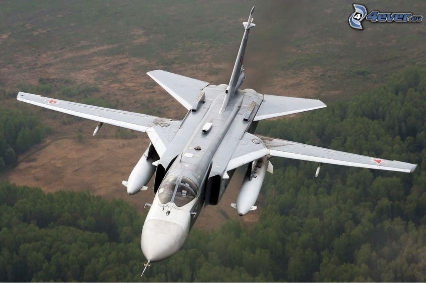 Sukhoi Su-24, forêt