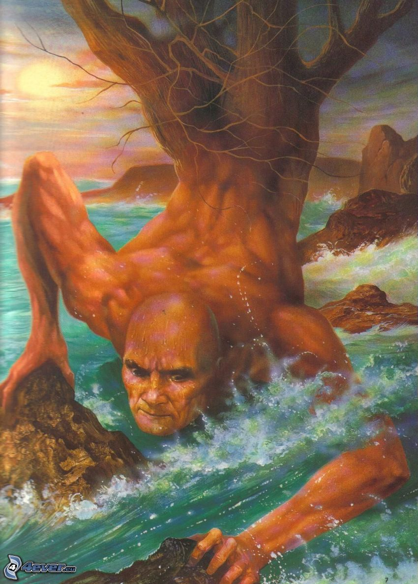 image, nature, mer, arbre, humain