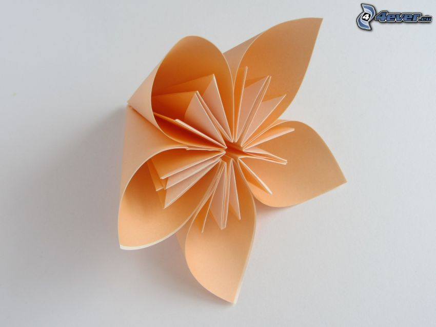 origami, fleur orange