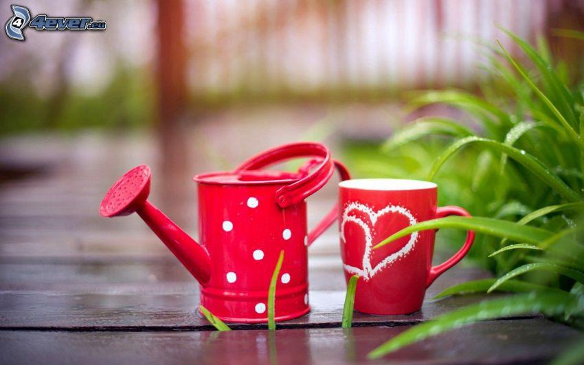 arrosoir, tasse, cœurs