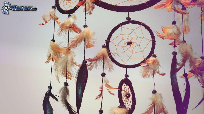 Capteur de rêves, plumes