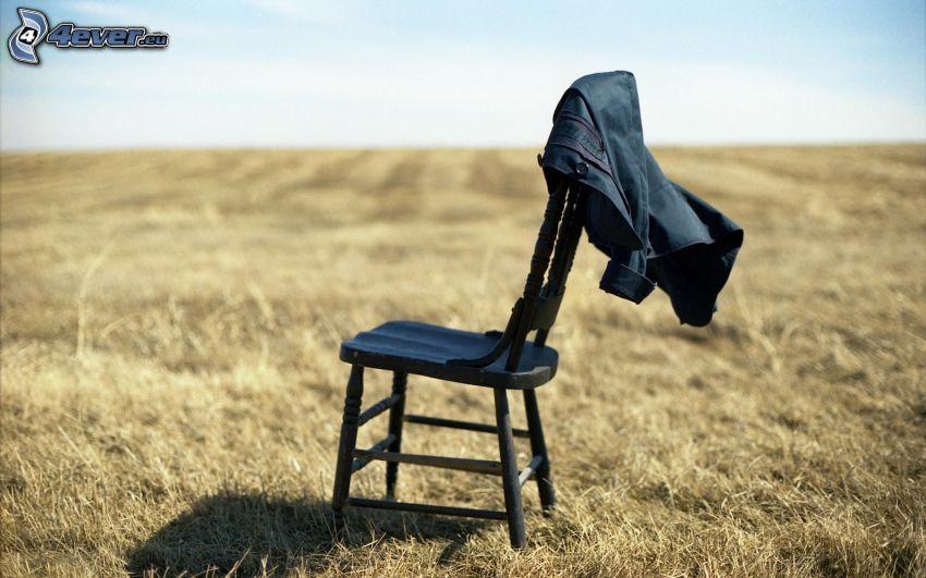 chaise, champ