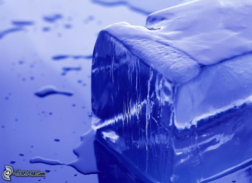 cube de glace