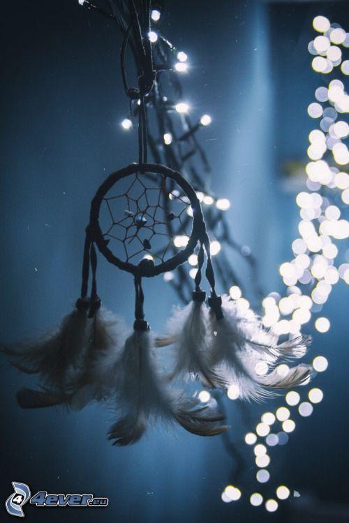 dream catcher, lumières, plumes