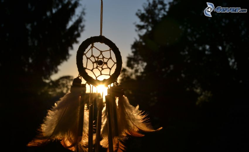 dream catcher, soleil, arbres, plumes