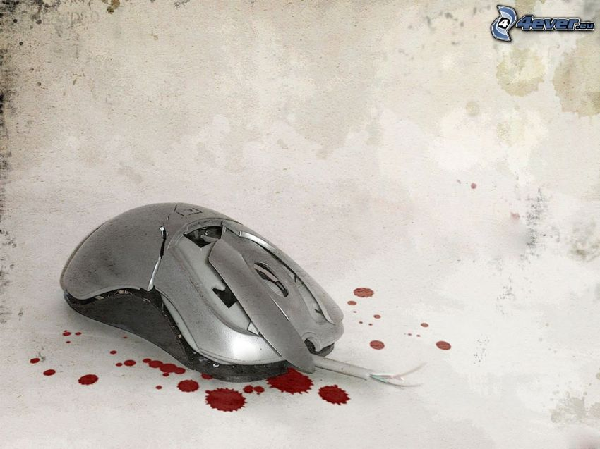 souris d'ordinateur, gouttes, sang