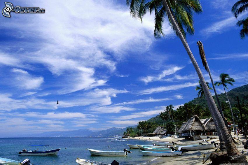 bateau à côte, palmiers, mer, plage