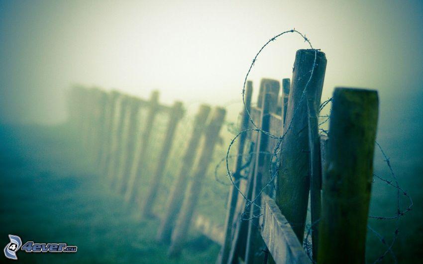 grillage, vieille clôture