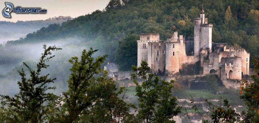 château de Bonaguil, arbres