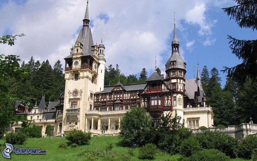 le Château de Peles, arbres, forêt
