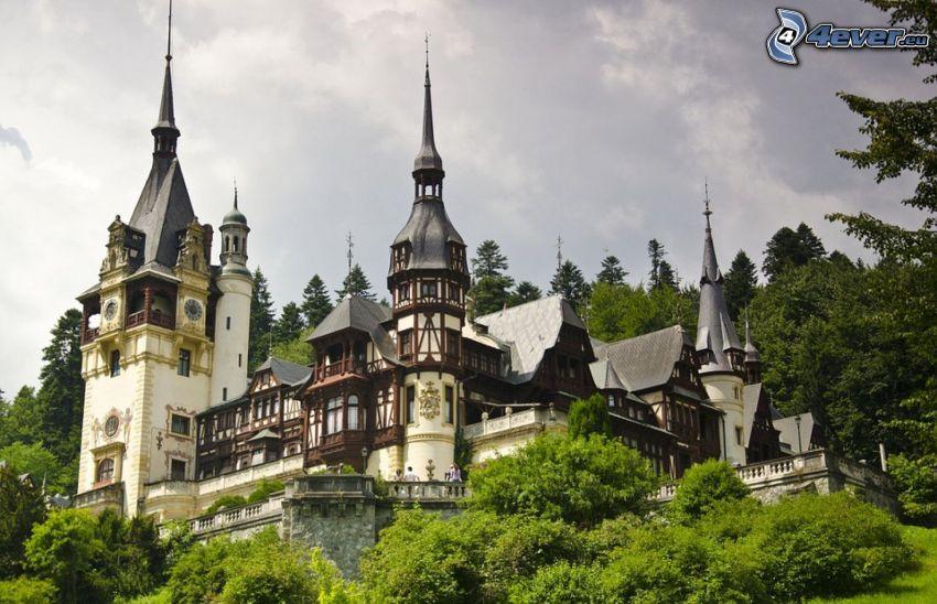 le Château de Peles, forêt