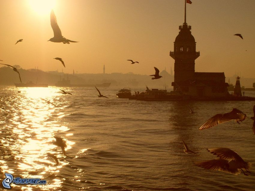 Kiz Kulesi, coucher du soleil, mouettes, mer