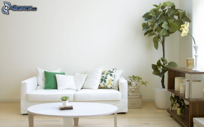 salle de séjour, canapé, fleur