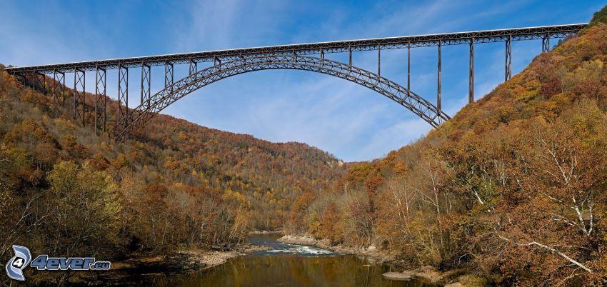 New River Gorge Bridge, rivière, forêt d'automne