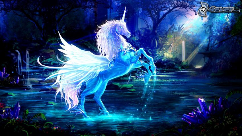 cheval blanc, fantaisie