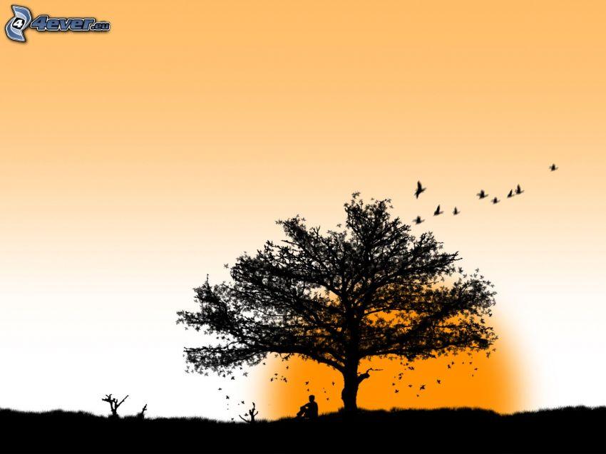 arbre solitaire, vol d'oiseaux, homme, soleil, silhouettes