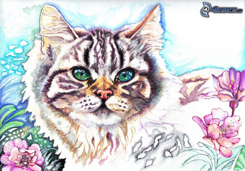 chat, regard, fleurs roses