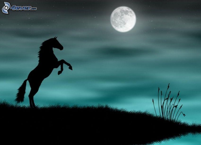 cheval, silhouette, saut, lune