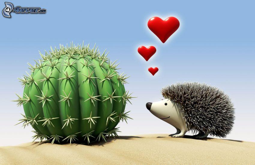 amour, hérisson, cactus