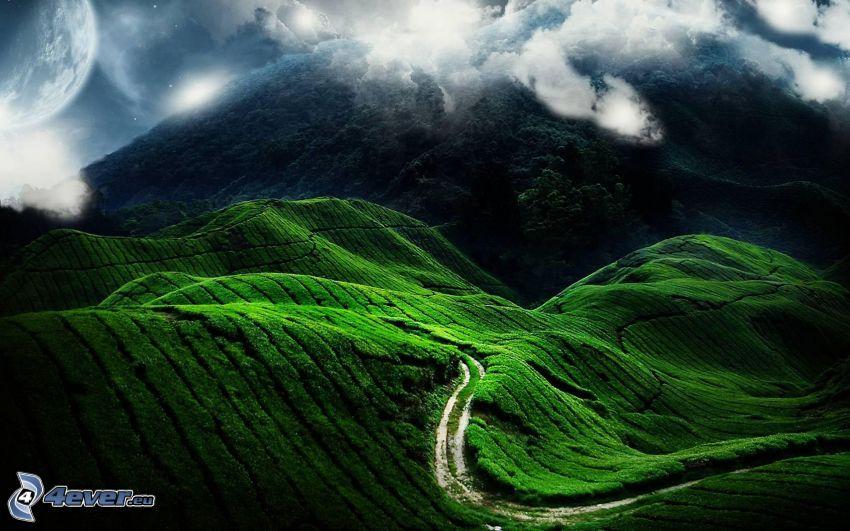 collines, sentier de la nature, nuages, planète