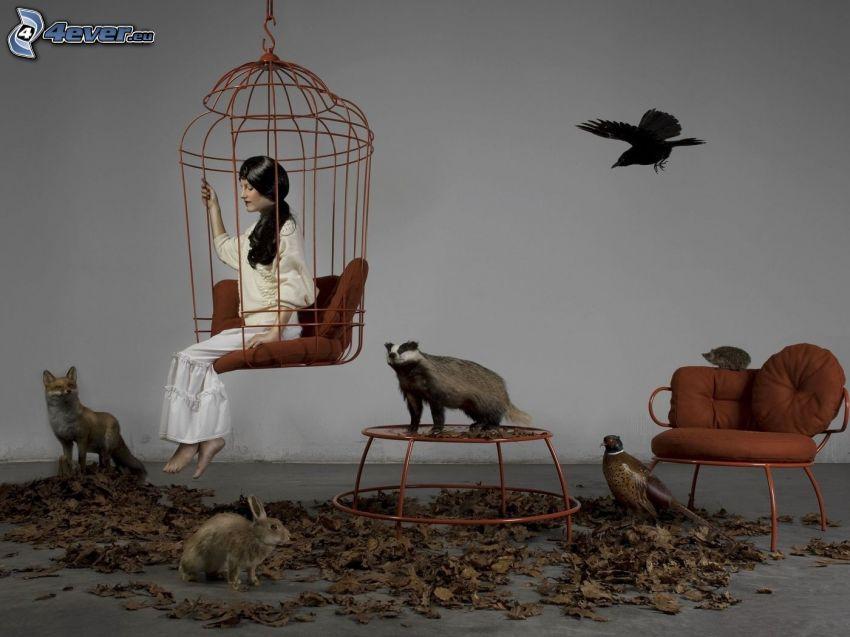 femme sur une balançoire, cage, animaux, renard, lapin, blaireau, faisan, hérisson, oiseau