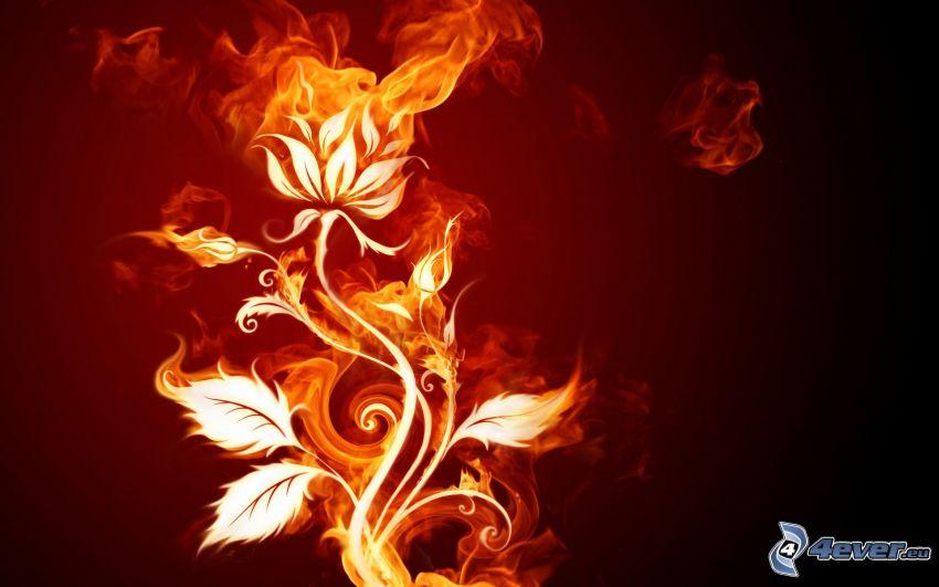 fleur, feu