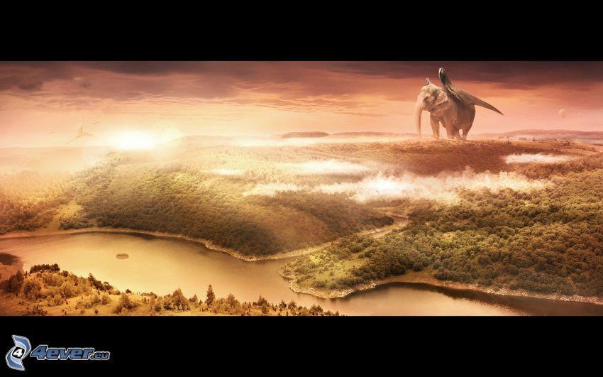 paysage, éléphant
