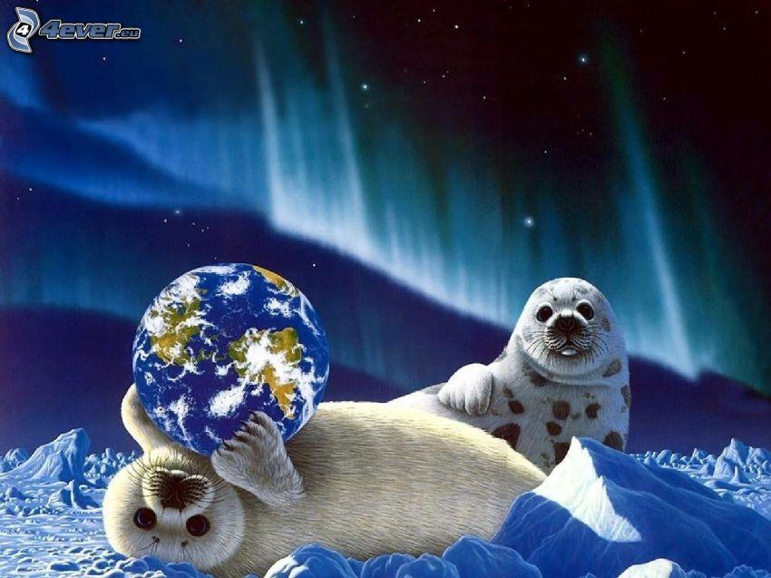 phoques, planète Terre, neige, aurore polaire