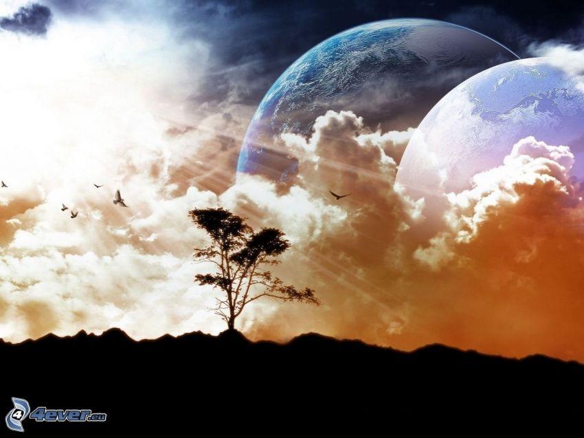 planètes, silhouette de l'arbre, soleil, nuages
