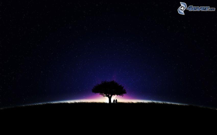 silhouette de l'arbre, silhouette du couple, étoiles, lueur