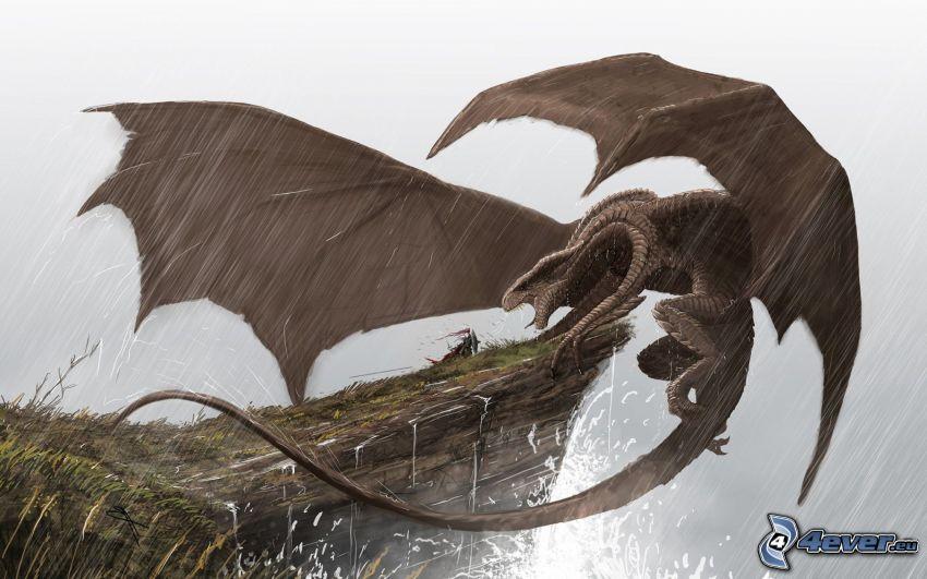 dragon, falaise, pluie