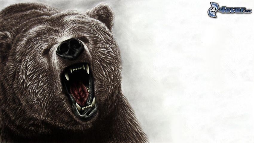 grizzli, museau, bâillement