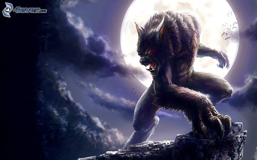 loup-garou, lune, nuit