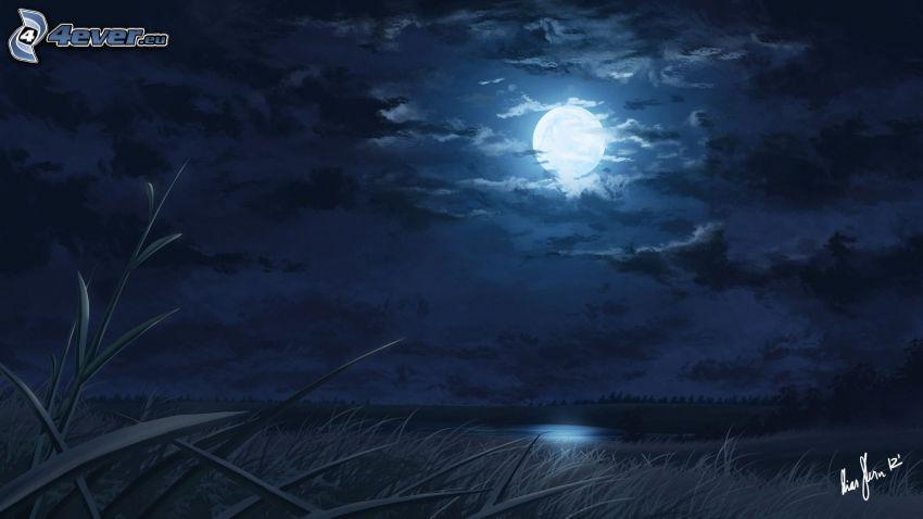 nuit, lune, champ