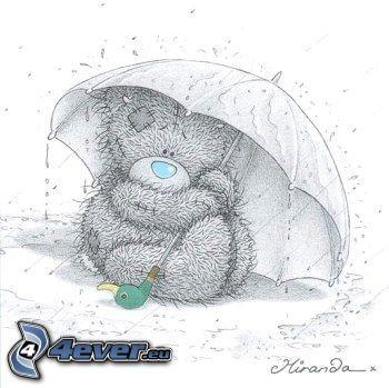 ourson, parapluie